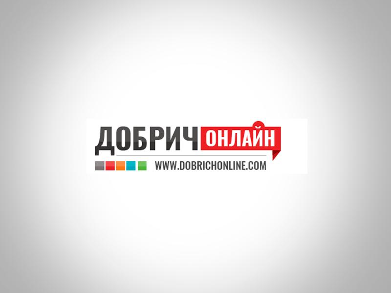 dobrich-online logo